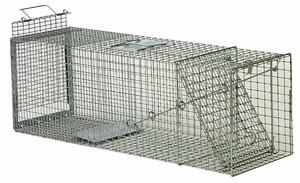 Safeguard Humane Animal Trap rental Pittsburgh, PA