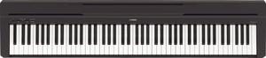 Digital Piano rental Chicago, IL