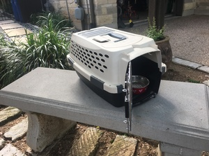 Pet - Cat or Small Dog Carrier rental Austin, TX