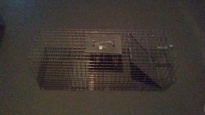 Large 1-Door Live Animal Trap rental Columbus, OH