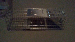 Small 1-Door Live Animal Trap rental Columbus, OH