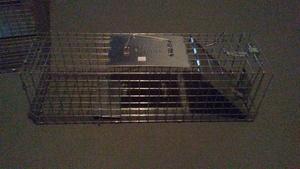 Small 1-Door Live Animal Trap rental Columbus, OH