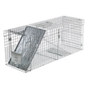 Large live animal trap - for raccoons, dogs rental Austin, TX